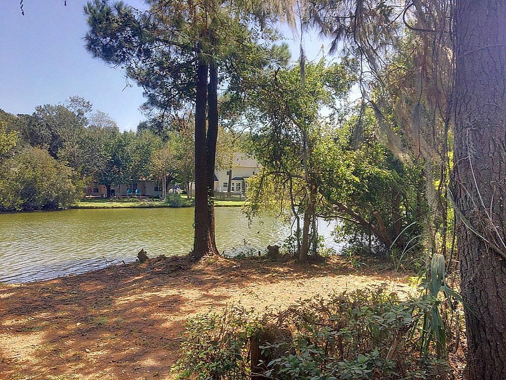 Center Lake Homes For Sale - 1318 Center Lake, Mount Pleasant, SC - 20