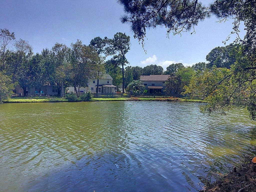 Center Lake Homes For Sale - 1318 Center Lake, Mount Pleasant, SC - 17