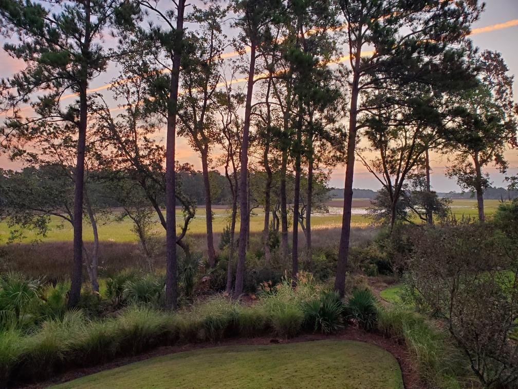 Daniel Island Park Homes For Sale - 439 Lesesne, Charleston, SC - 9