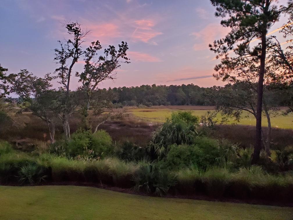 Daniel Island Park Homes For Sale - 439 Lesesne, Charleston, SC - 8