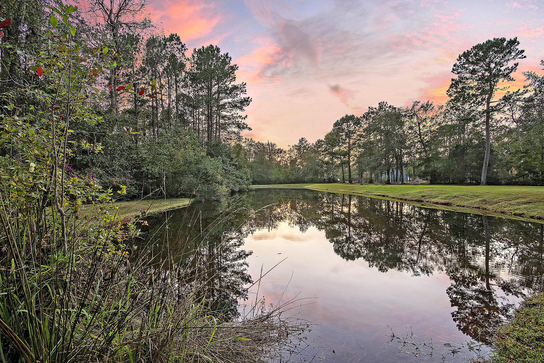 Bishop Farms Homes For Sale - 6125 Bay Pond, Ravenel, SC - 1