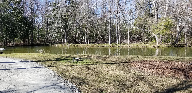 Bishop Farms Homes For Sale - 6035 Bay Pond, Ravenel, SC - 1