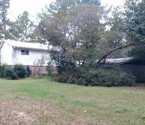 Ehrhardt Homes For Sale - 1359 Mount Pleasant, Ehrhardt, SC - 4