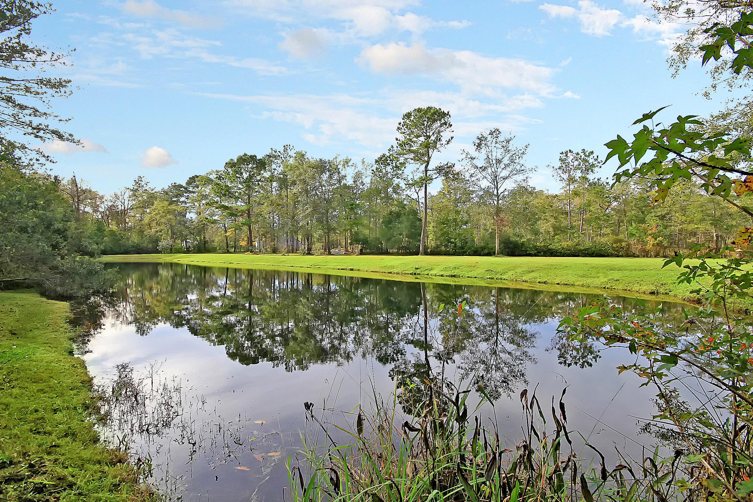Bishop Farms Homes For Sale - 6125 Bay Pond, Ravenel, SC - 45
