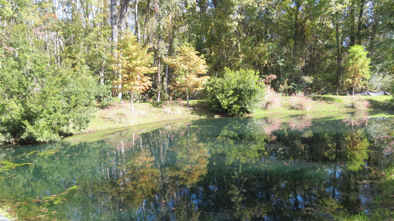 Fulton Park Homes For Sale - 1226 Max, Mount Pleasant, SC - 4