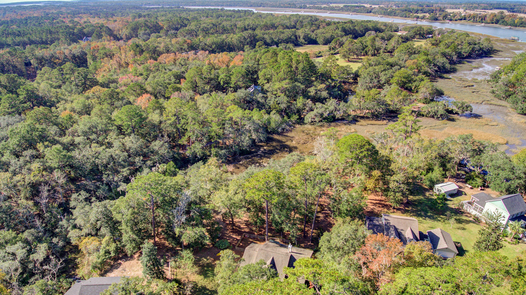 Hickory Hill Estates Homes For Sale - 3339 Hickory Hill, Johns Island, SC - 11
