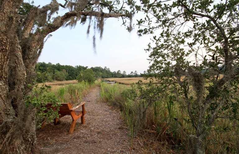 Carolina Bay Homes For Sale - 2238 Henry Tecklenburg, Charleston, SC - 27