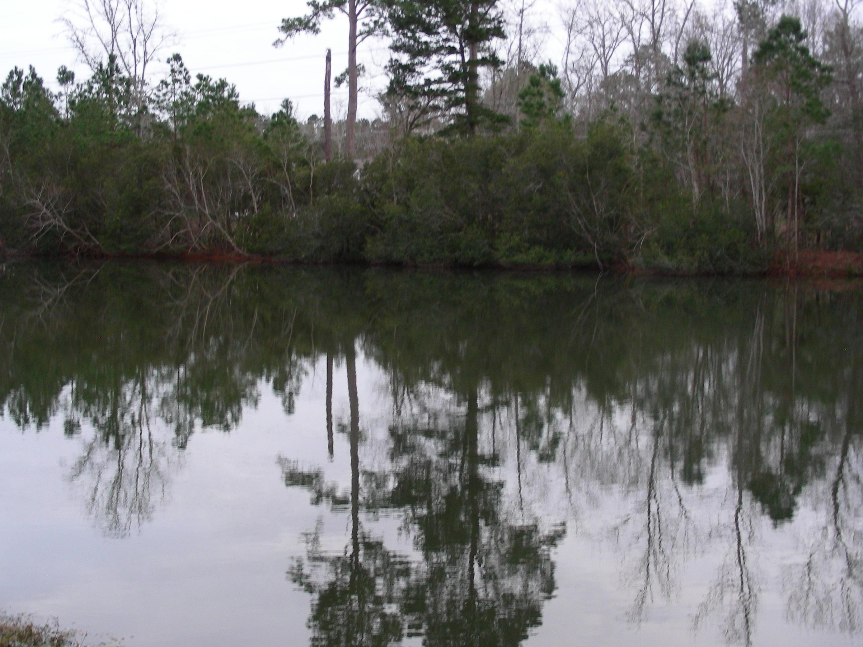 Wescott Plantation Homes For Sale - 8990 Cat Tail Pond, Summerville, SC - 26