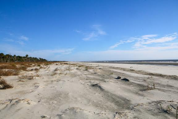 Dewees Island Lots For Sale - 291 Pelican Flight, Dewees Island, SC - 7