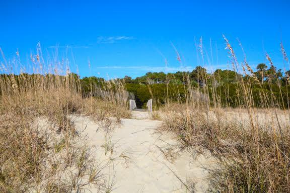 Dewees Island Lots For Sale - 291 Pelican Flight, Dewees Island, SC - 9