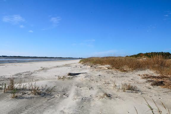 Dewees Island Lots For Sale - 291 Pelican Flight, Dewees Island, SC - 10