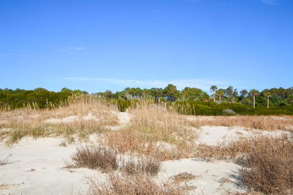 Dewees Island Lots For Sale - 291 Pelican Flight, Dewees Island, SC - 11