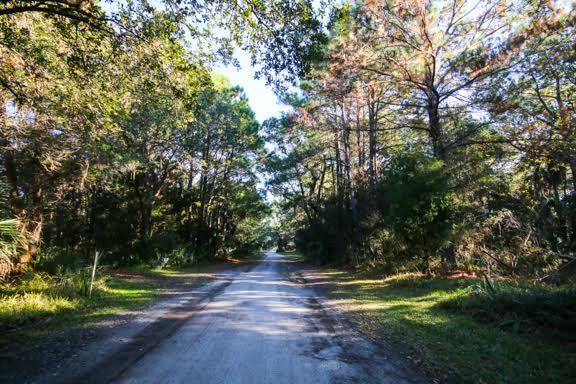 Dewees Island Lots For Sale - 291 Pelican Flight, Dewees Island, SC - 1