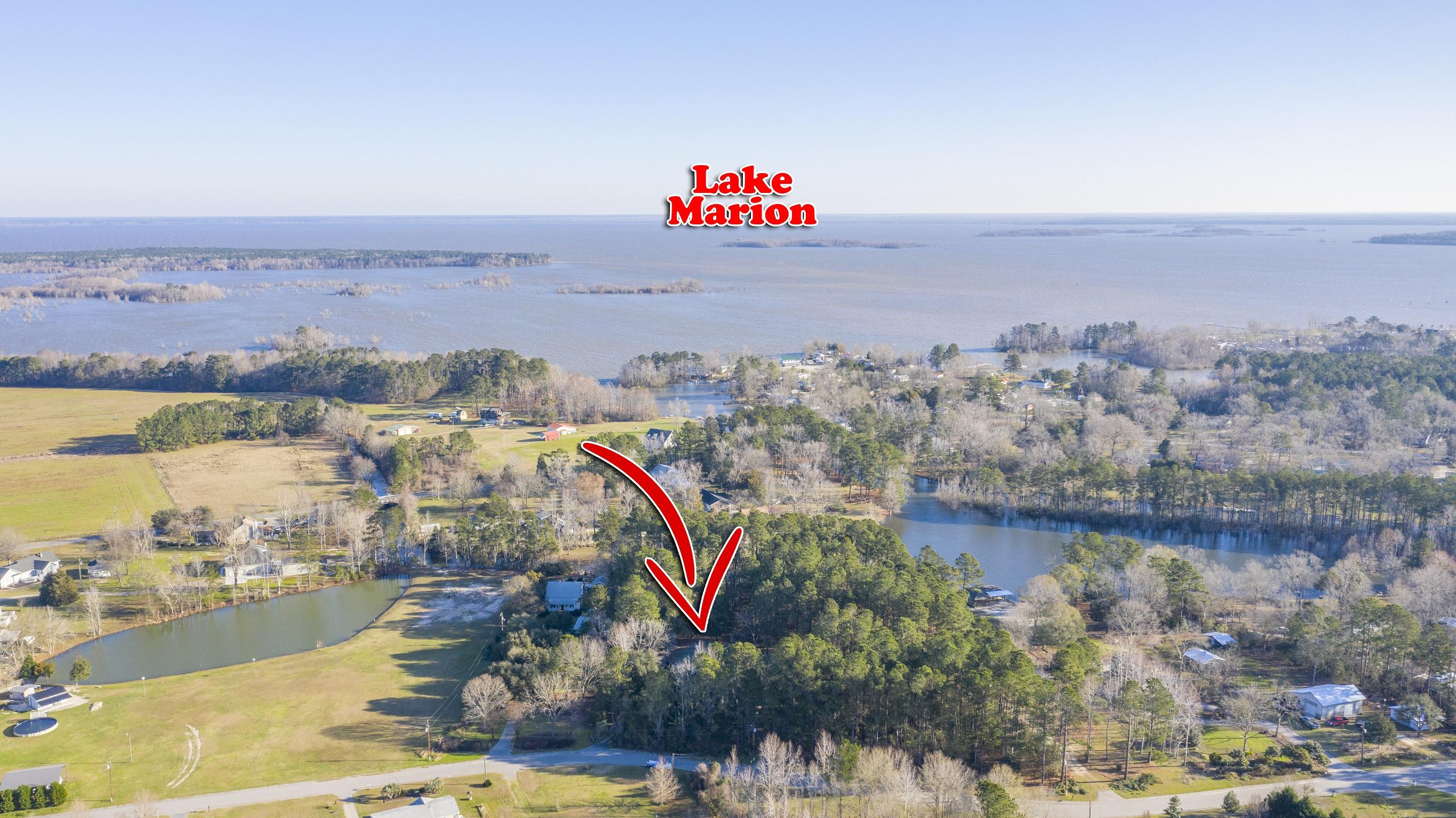Plantation II Homes For Sale - 141 Meredith, Eutawville, SC - 20