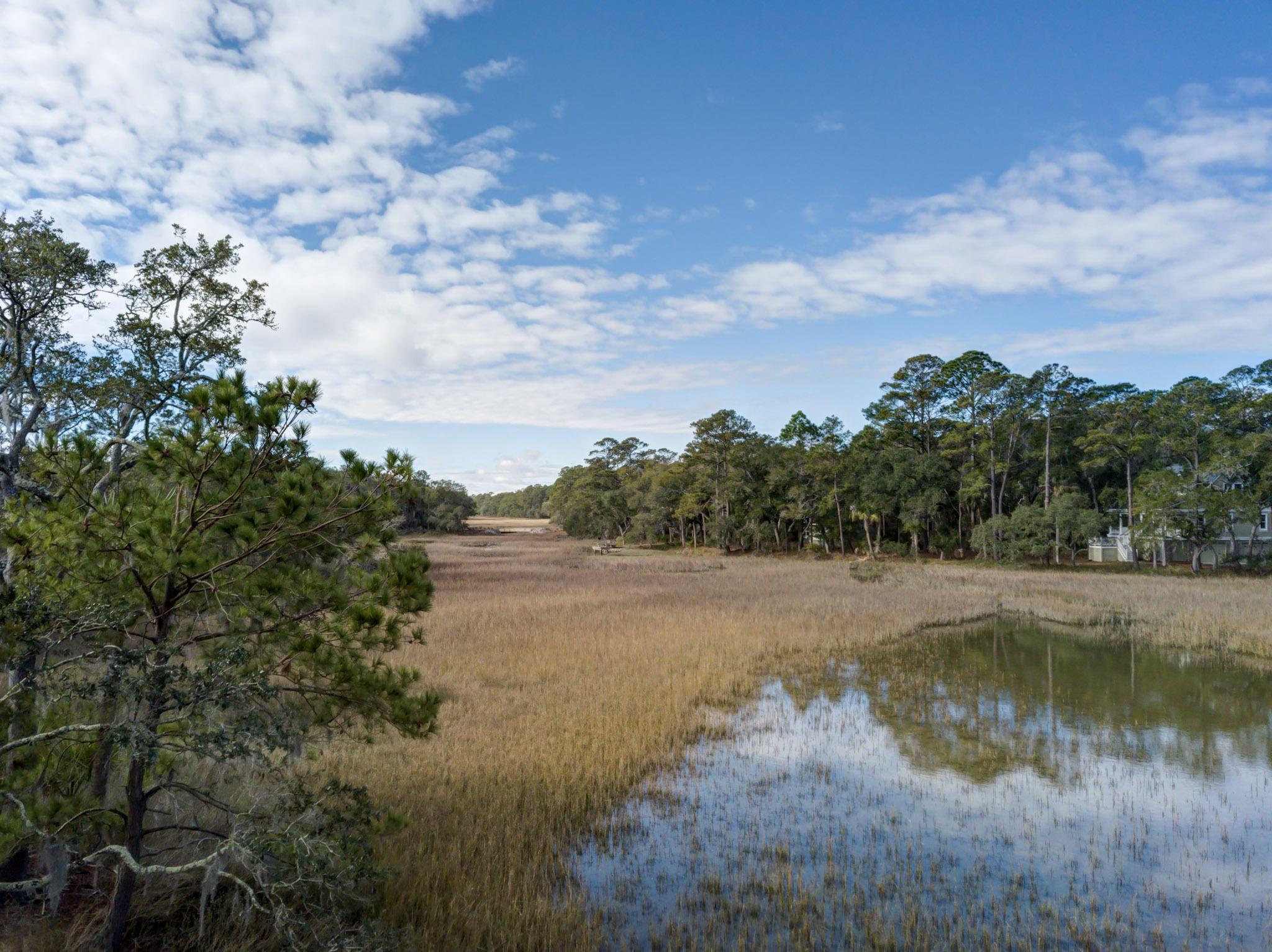 Creek Watch Villas Homes For Sale - 1244 Creek Watch, Johns Island, SC - 10