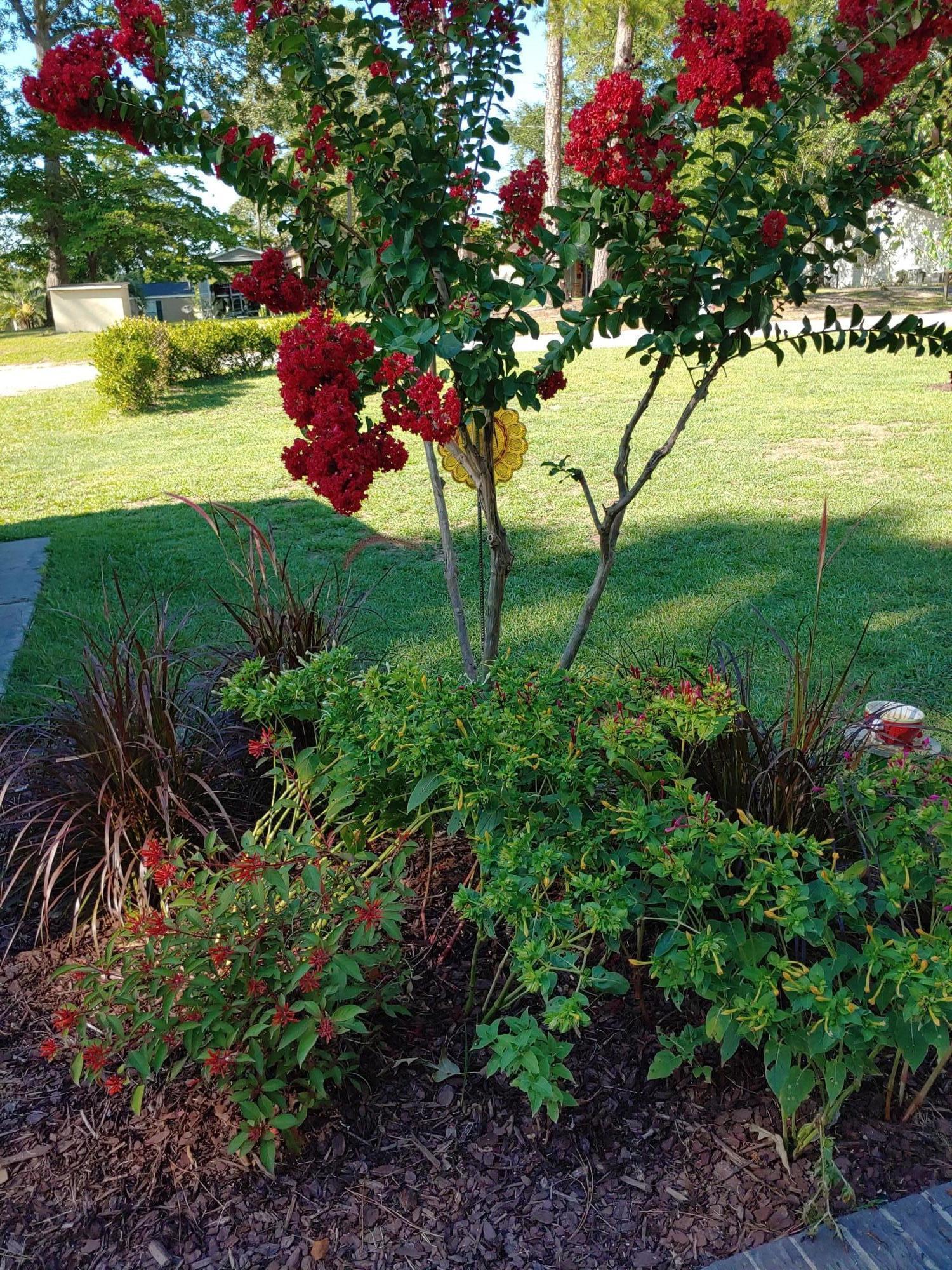 White Oak I Homes For Sale - 1248 Dollard, Summerton, SC - 23