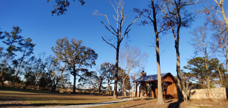 Church Creek Landing Homes For Sale - 2337 Town Woods, Charleston, SC - 2