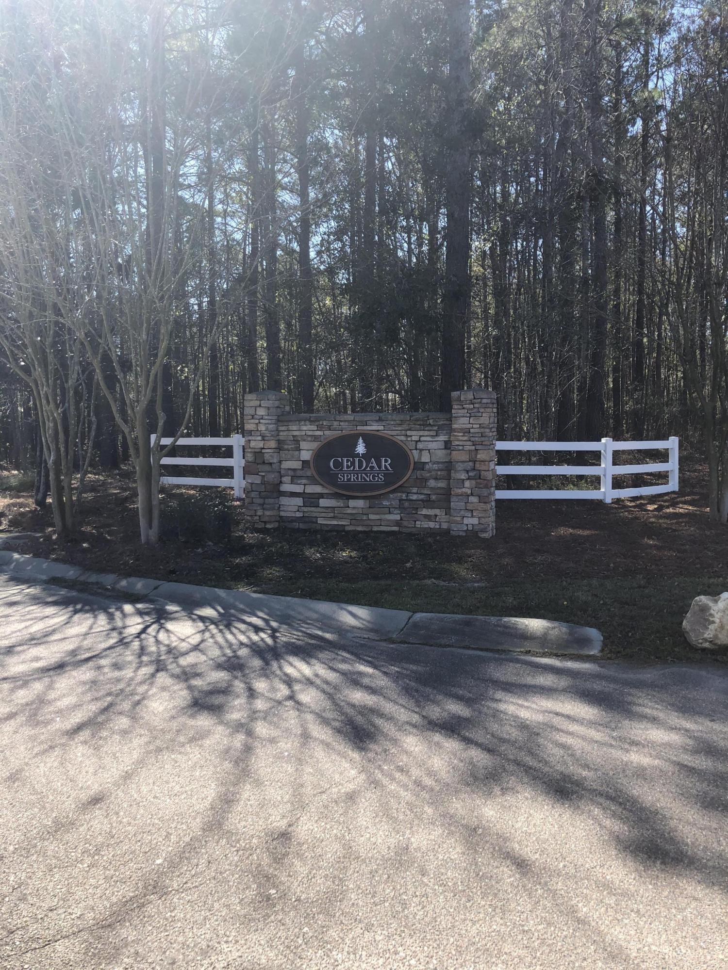 Cedar Springs Homes For Sale - 289 Reagan, Summerville, SC - 2