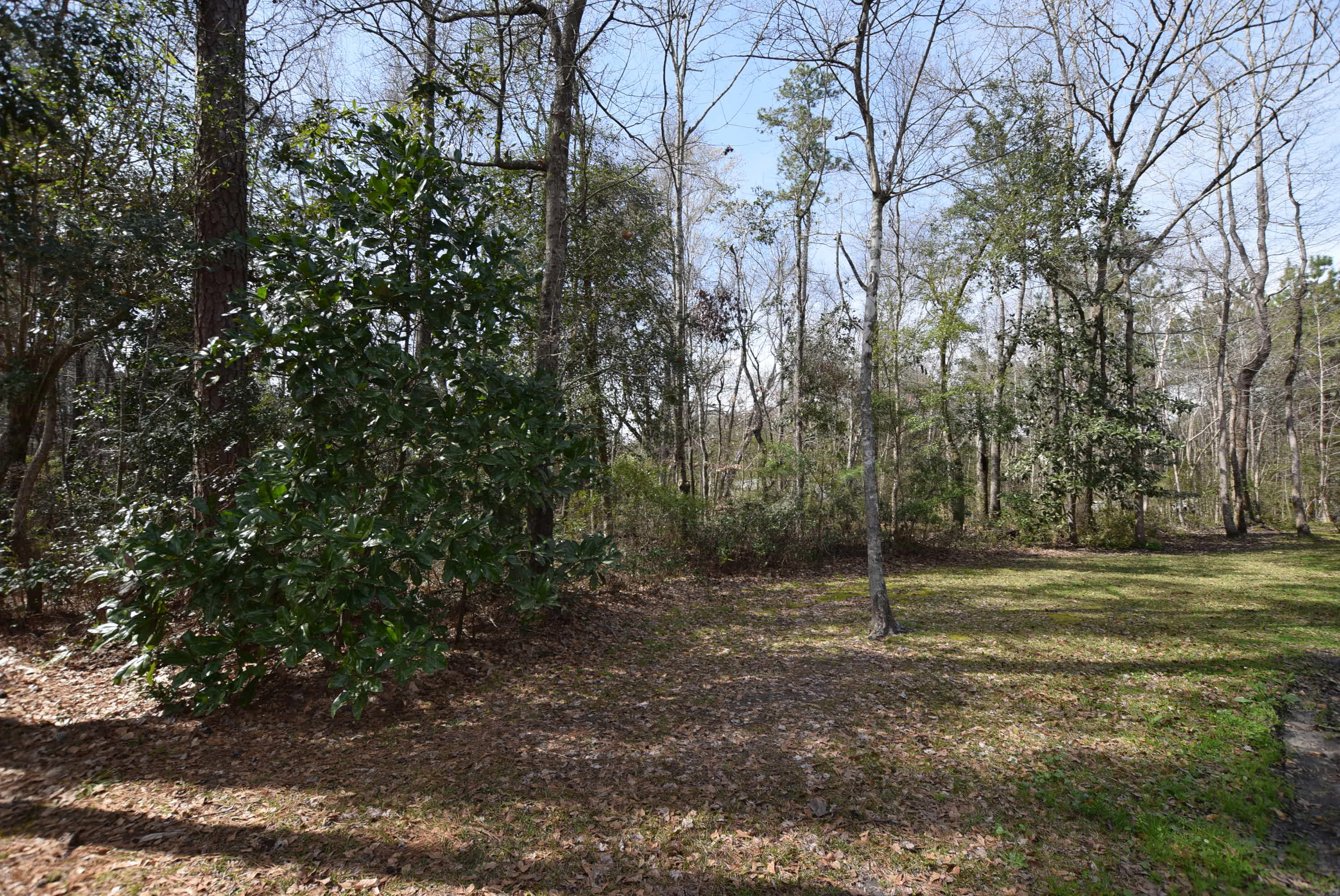 Summerville Homes For Sale - 2469 Hwy 17 A, Summerville, SC - 12