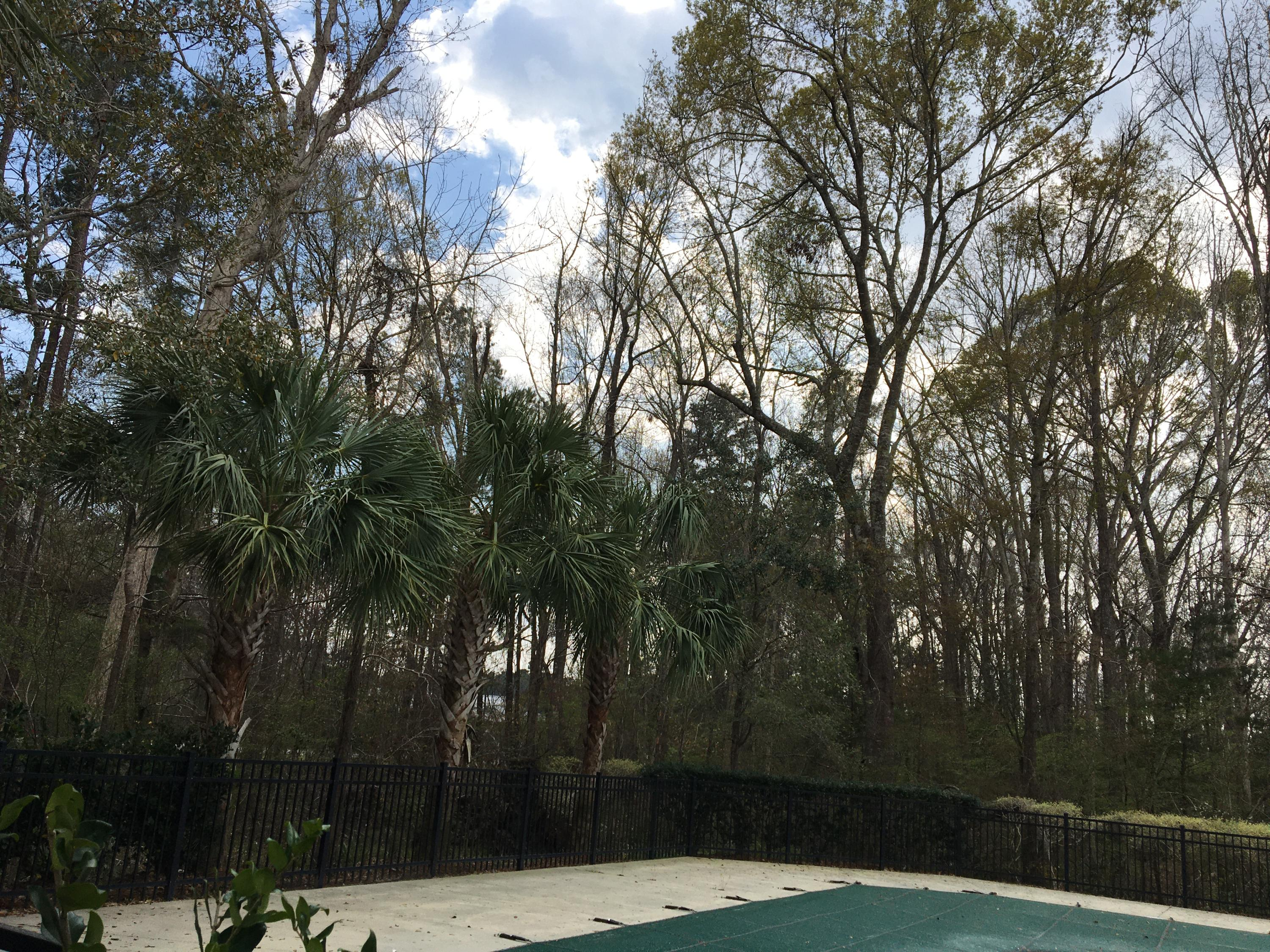 Coosaw Commons Homes For Sale - 8731 Grassy Oak Trail, North Charleston, SC - 0