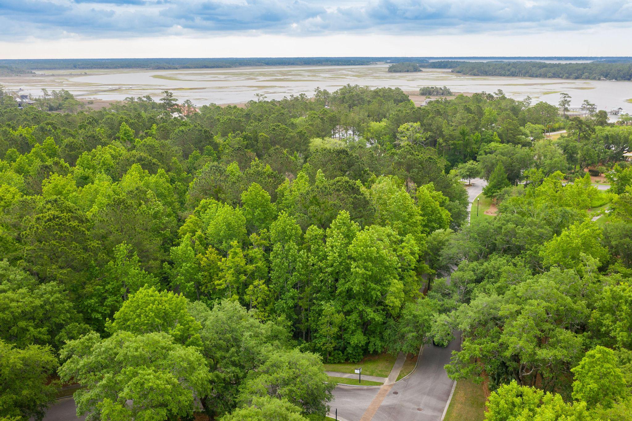 Beresford Hall Homes For Sale - 230 Grand Park, Charleston, SC - 1