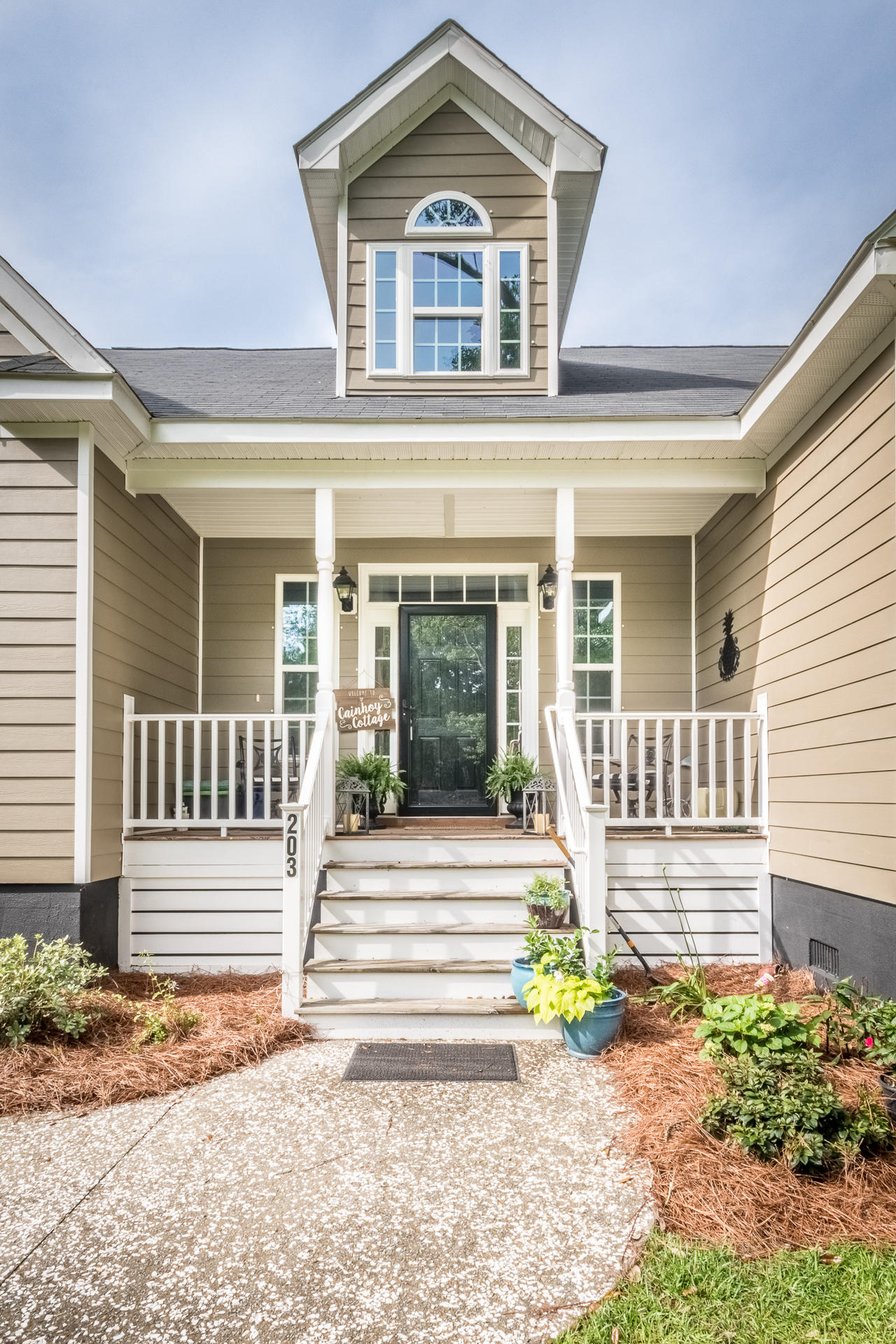 Cainhoy Landing Homes For Sale - 203 Ferry Point, Charleston, SC - 20