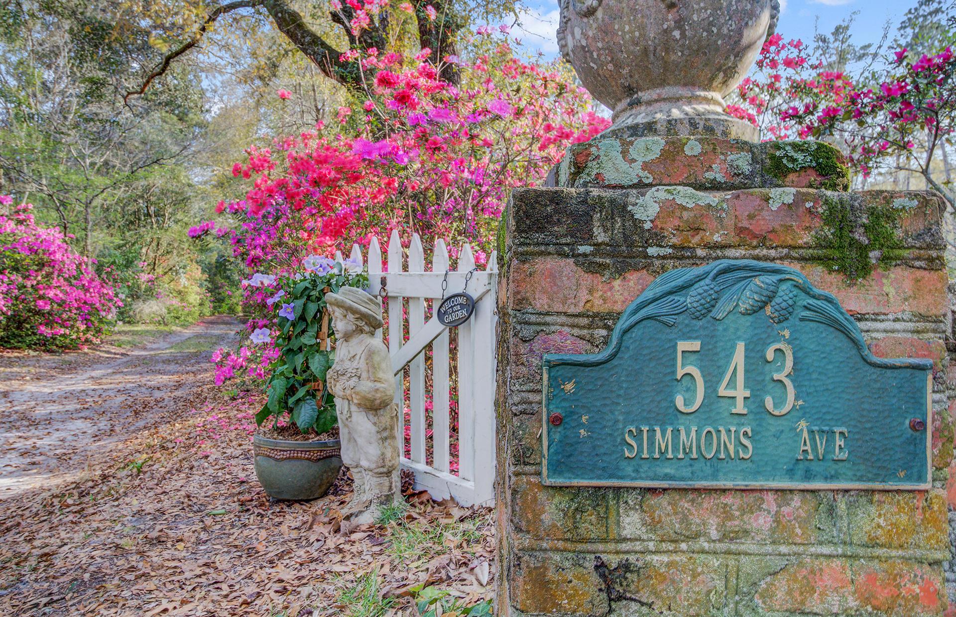 Pine Forest Inn Homes For Sale - 543 Simmons, Summerville, SC - 11