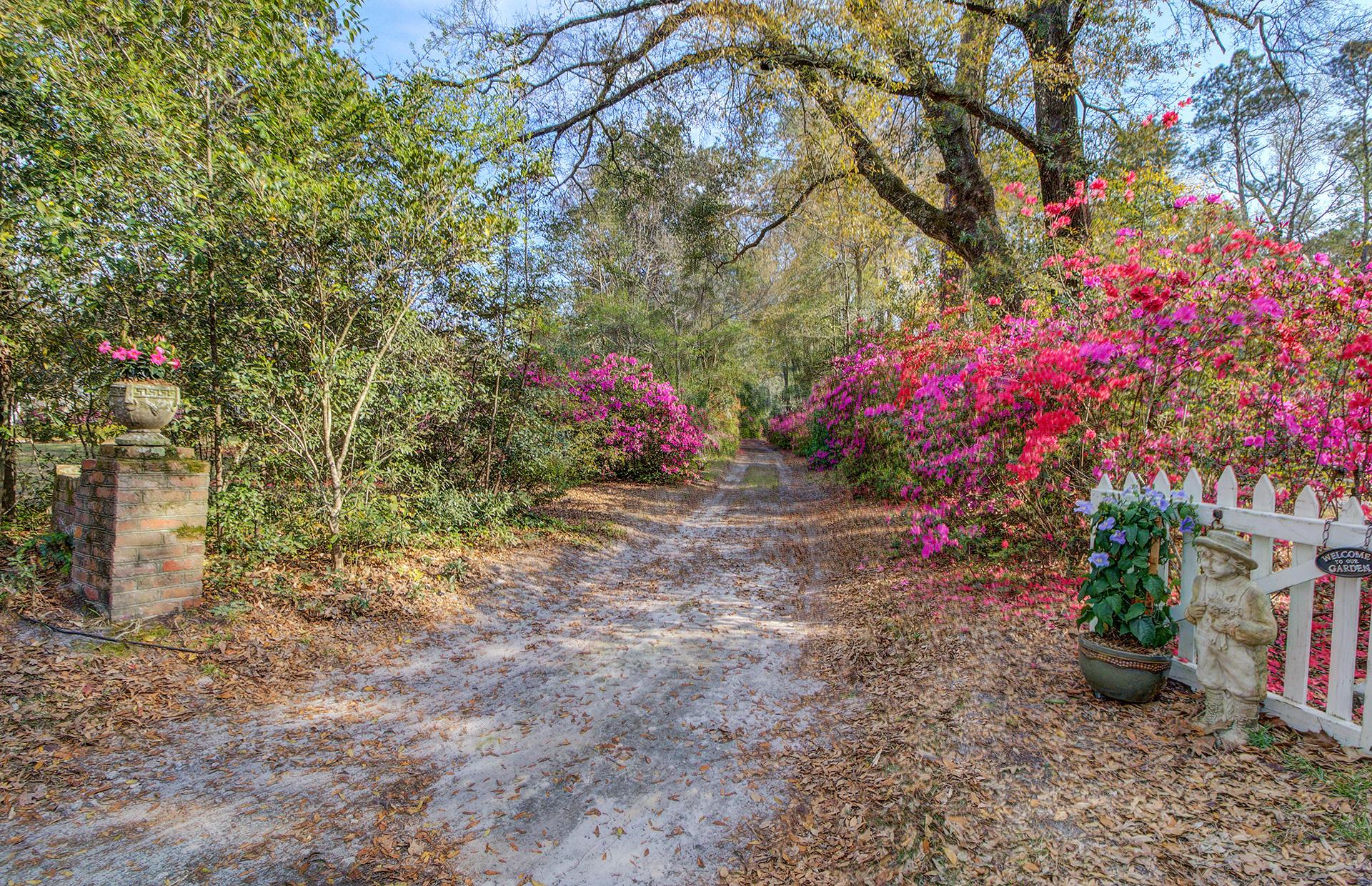Pine Forest Inn Homes For Sale - 543 Simmons, Summerville, SC - 12