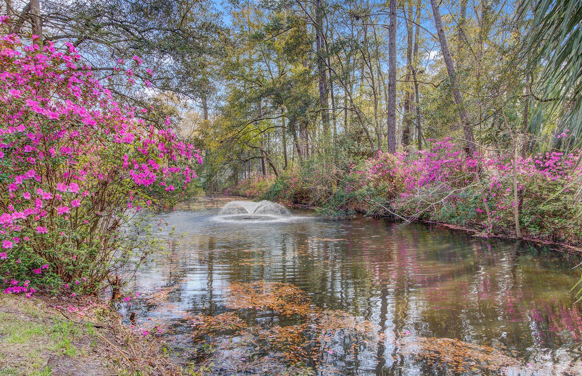 Pine Forest Inn Homes For Sale - 543 Simmons, Summerville, SC - 37