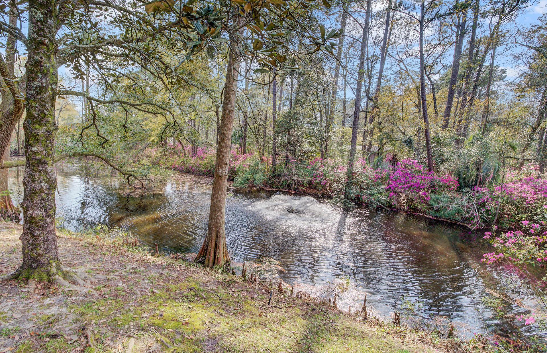 Pine Forest Inn Homes For Sale - 543 Simmons, Summerville, SC - 33