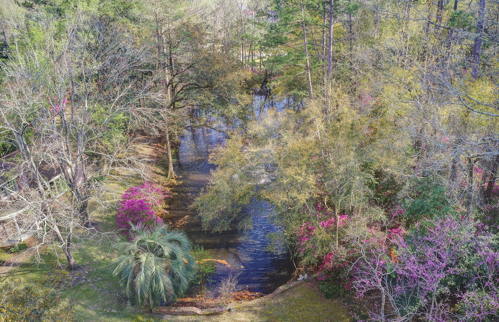 Pine Forest Inn Homes For Sale - 543 Simmons, Summerville, SC - 14