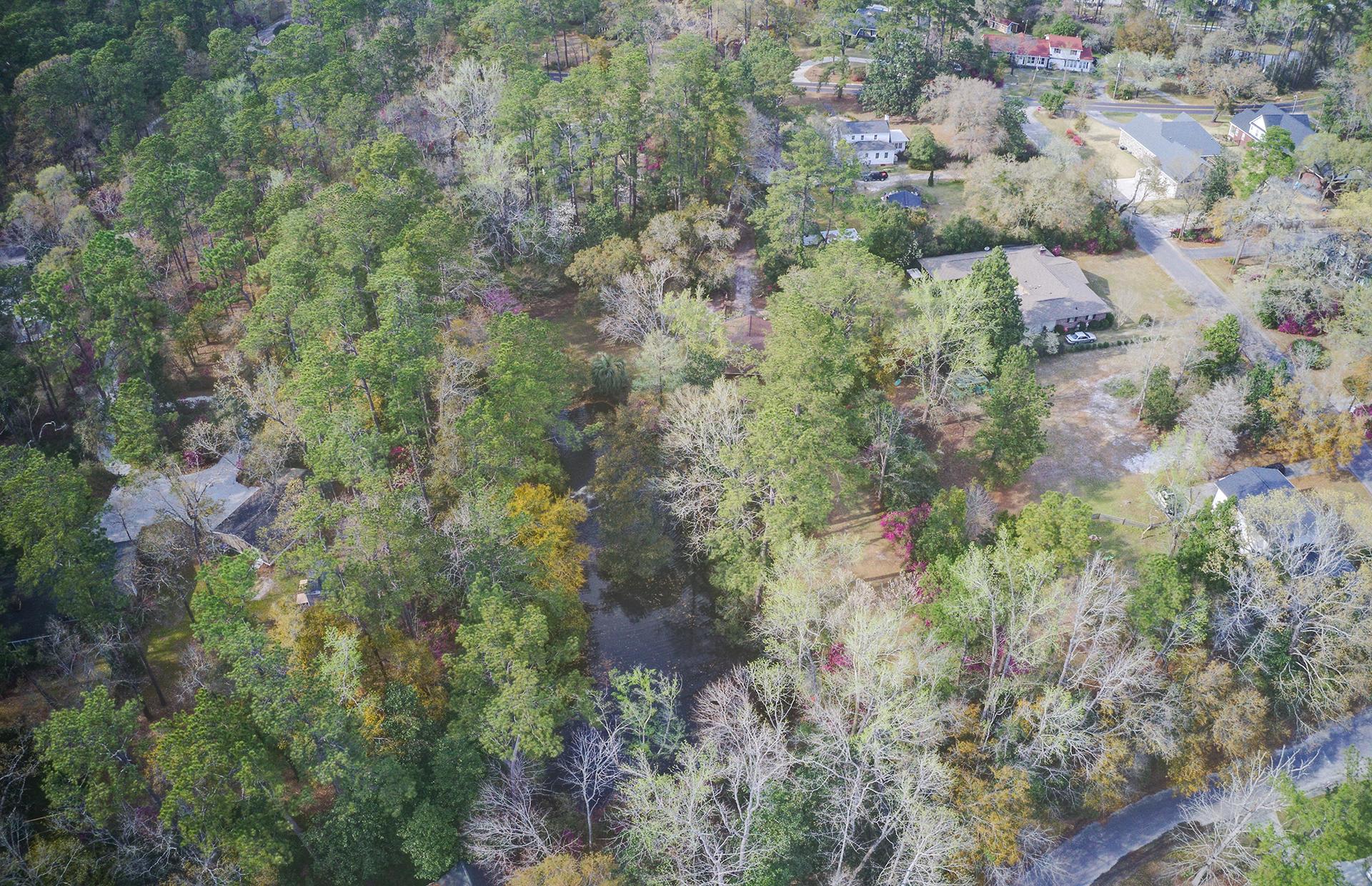 Pine Forest Inn Homes For Sale - 543 Simmons, Summerville, SC - 28