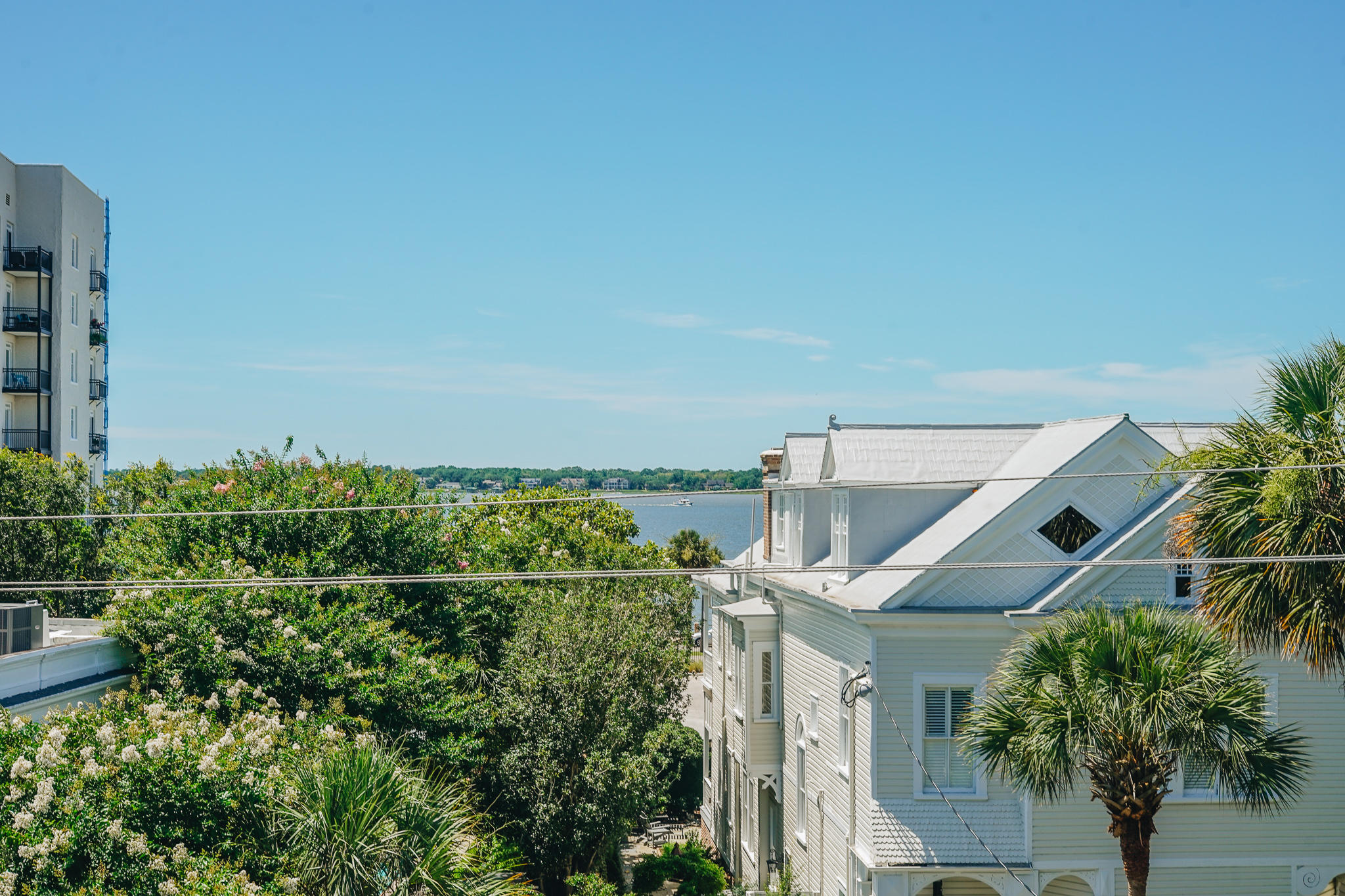 South of Broad Homes For Sale - 44 Battery, Charleston, SC - 9