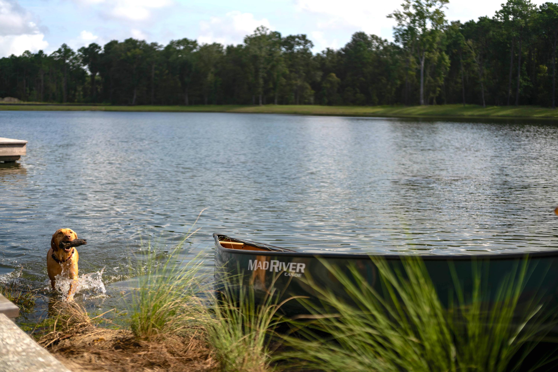Carolina Park Homes For Sale - 3803 Sawyers Island, Mount Pleasant, SC - 19