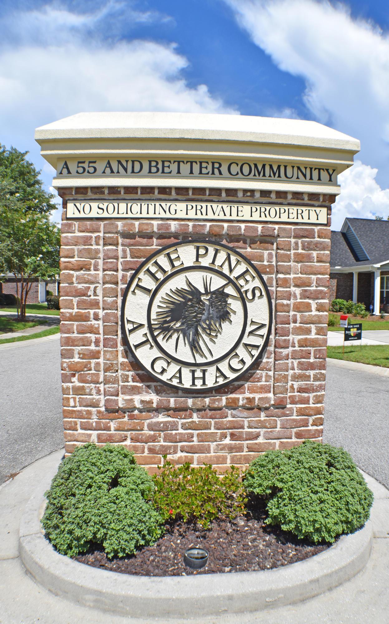 Pines at Gahagan Homes For Sale - 183 Angora, Summerville, SC - 23