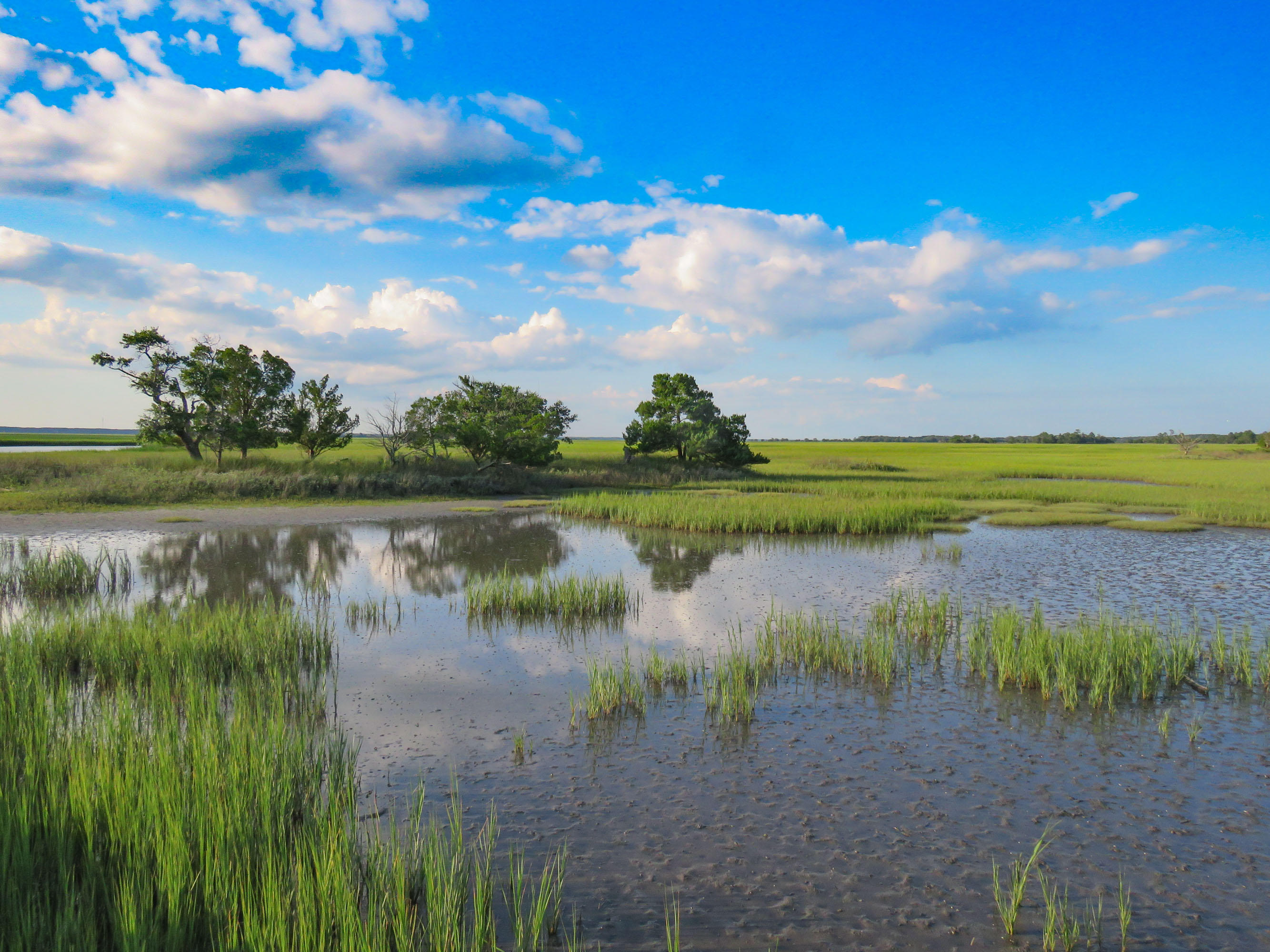 Dewees Island Lots For Sale - 310 Old House, Dewees Island, SC - 21