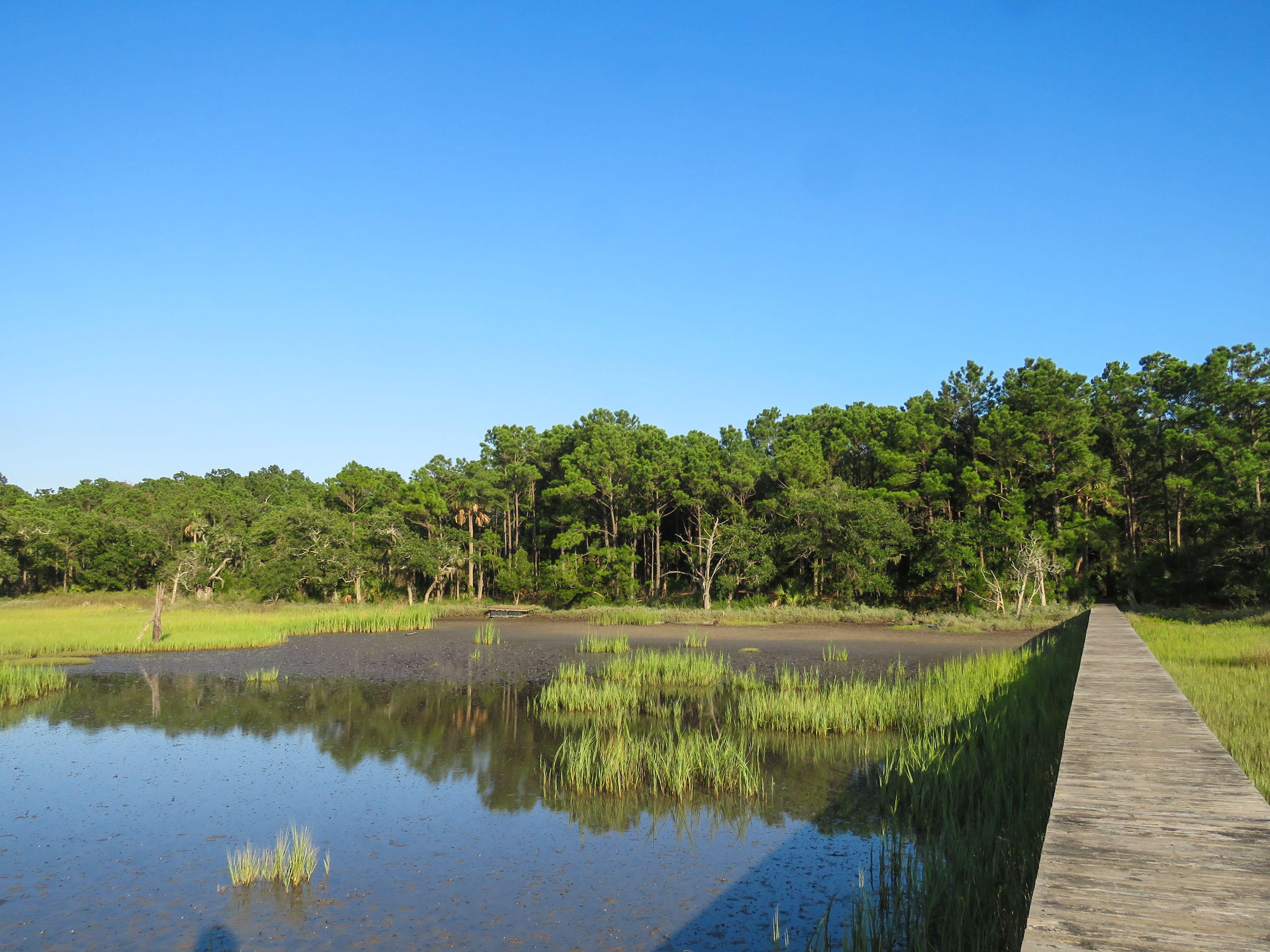 Dewees Island Lots For Sale - 310 Old House, Dewees Island, SC - 20