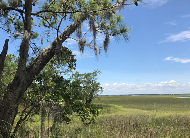 Dewees Island Lots For Sale - 310 Old House, Dewees Island, SC - 13