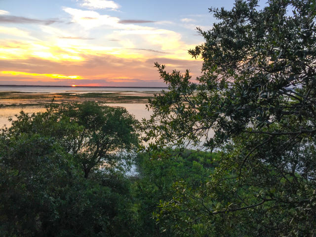 Dewees Island Lots For Sale - 310 Old House, Dewees Island, SC - 17