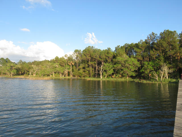 Dewees Island Lots For Sale - 310 Old House, Dewees Island, SC - 18