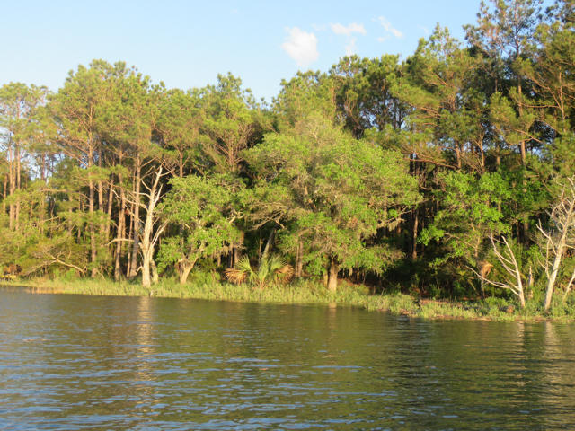 Dewees Island Lots For Sale - 310 Old House, Dewees Island, SC - 11