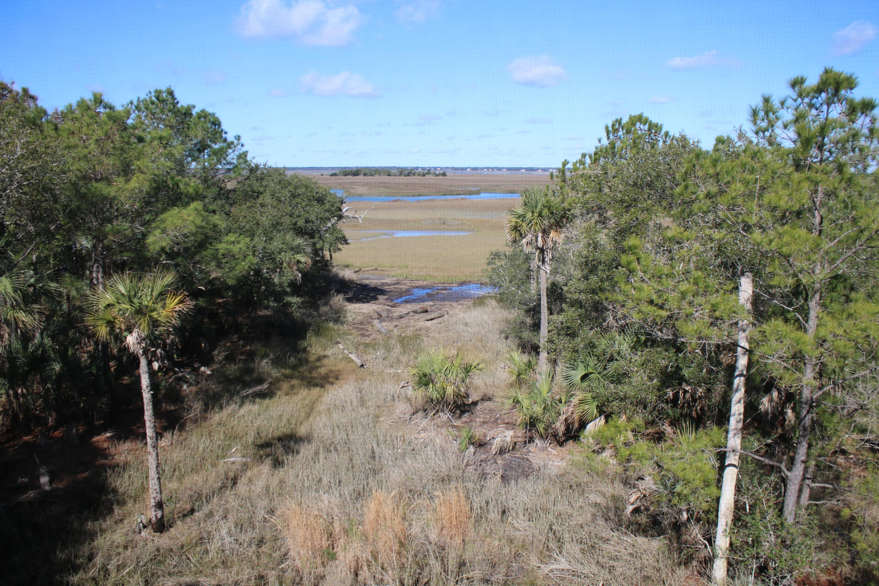 Dewees Island Lots For Sale - 310 Old House, Dewees Island, SC - 10