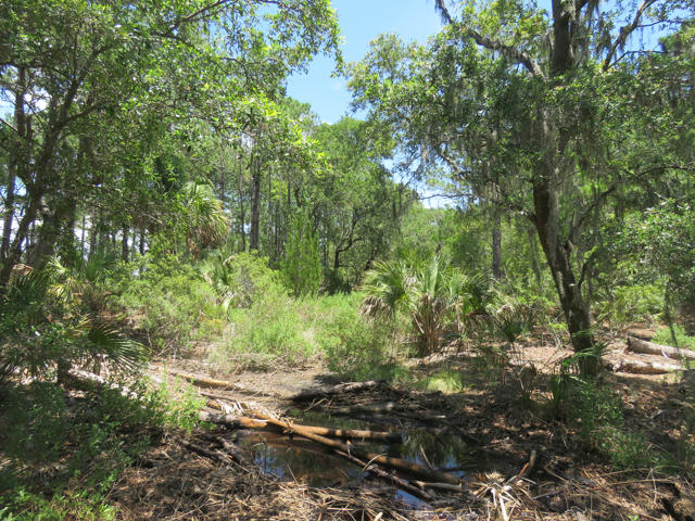 Dewees Island Lots For Sale - 310 Old House, Dewees Island, SC - 9