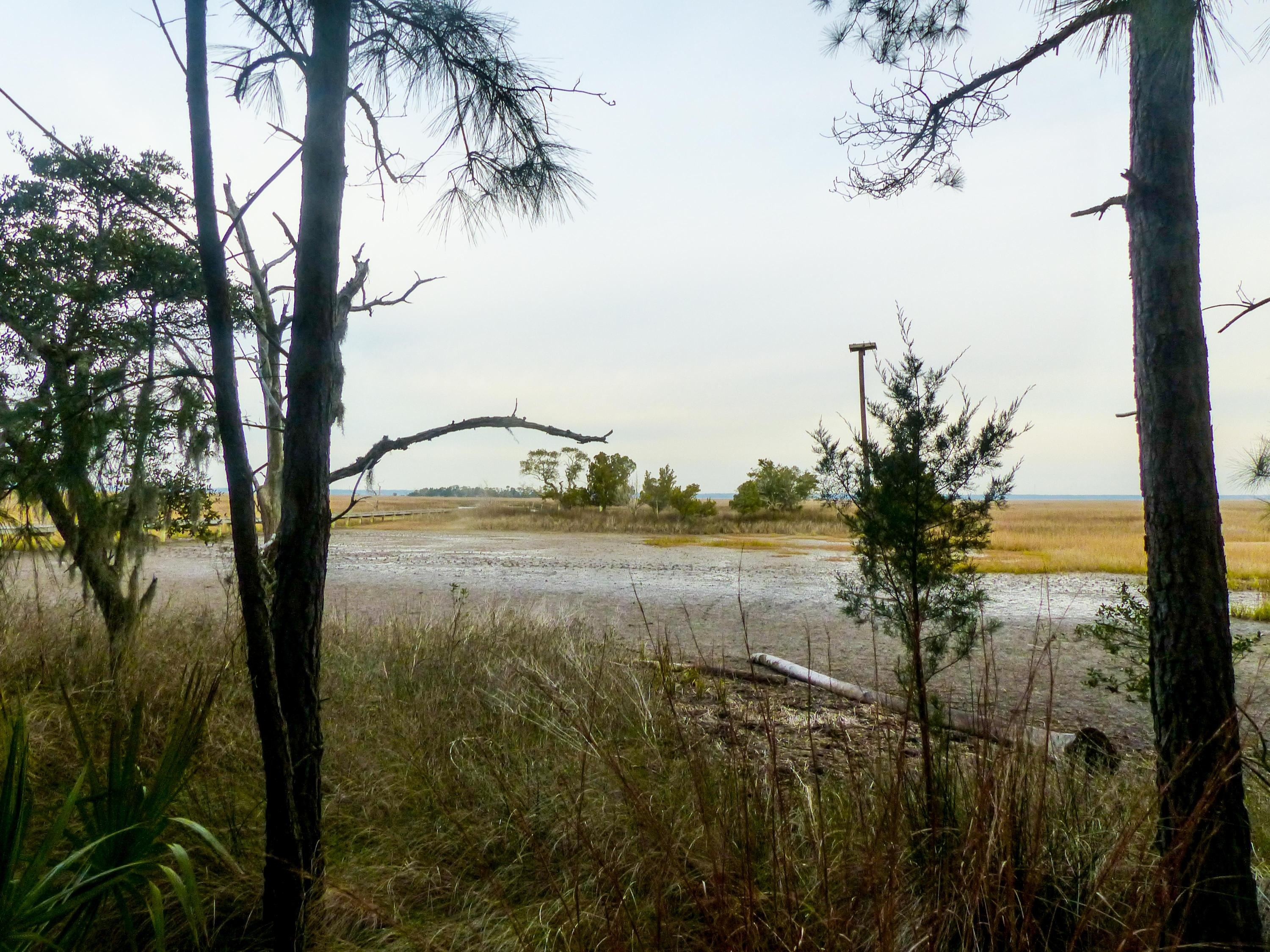 Dewees Island Lots For Sale - 310 Old House, Dewees Island, SC - 3