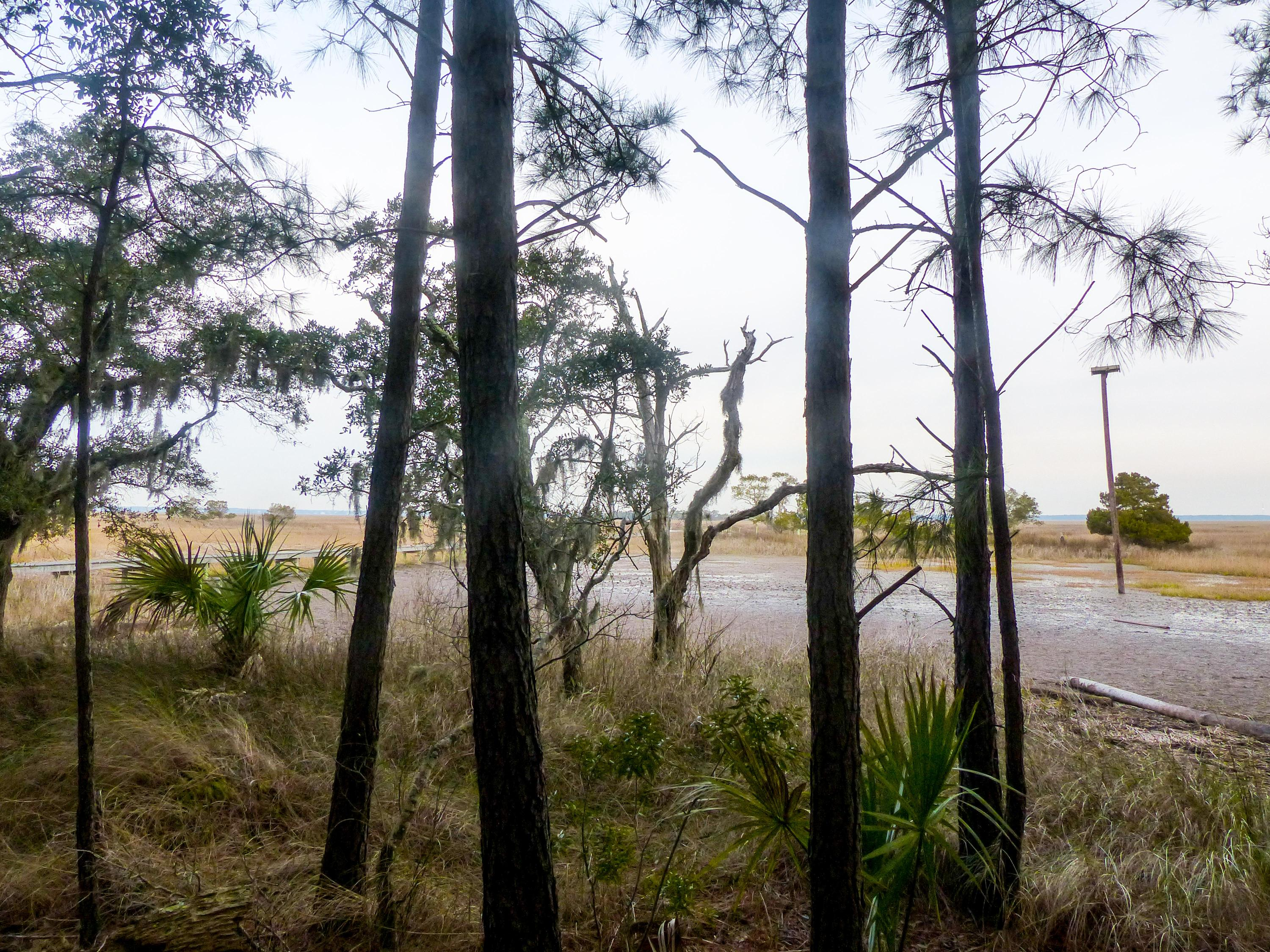 Dewees Island Lots For Sale - 310 Old House, Dewees Island, SC - 2
