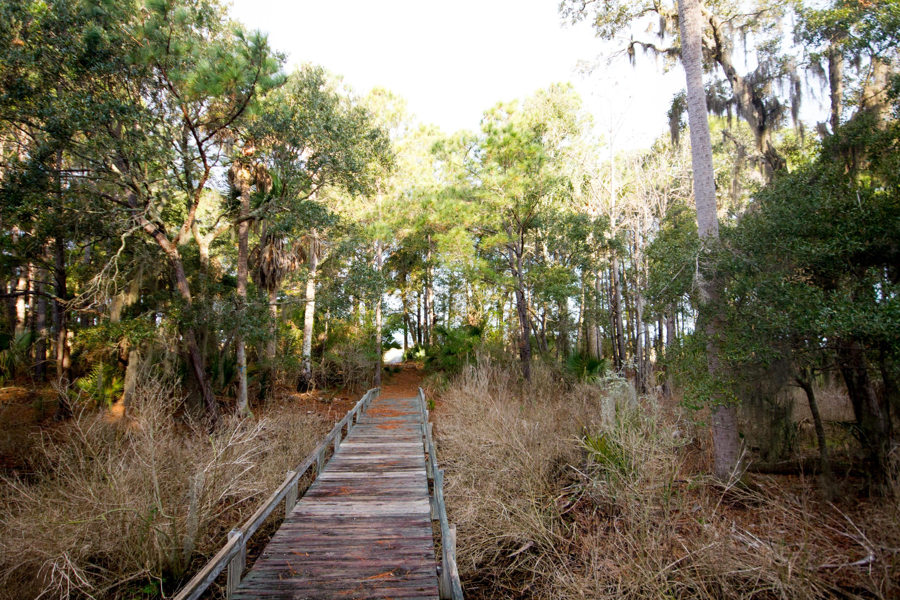 Dewees Island Lots For Sale - 310 Old House, Dewees Island, SC - 19