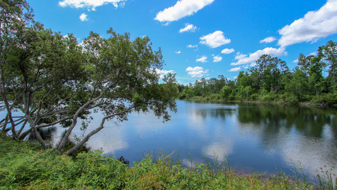 Woodbury Park Homes For Sale - 2721 Harmony Lake, Johns Island, SC - 41