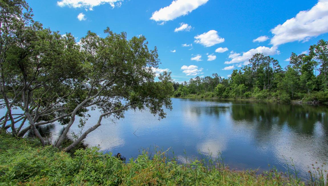 Woodbury Park Homes For Sale - 2740 Harmony Lake, Johns Island, SC - 4