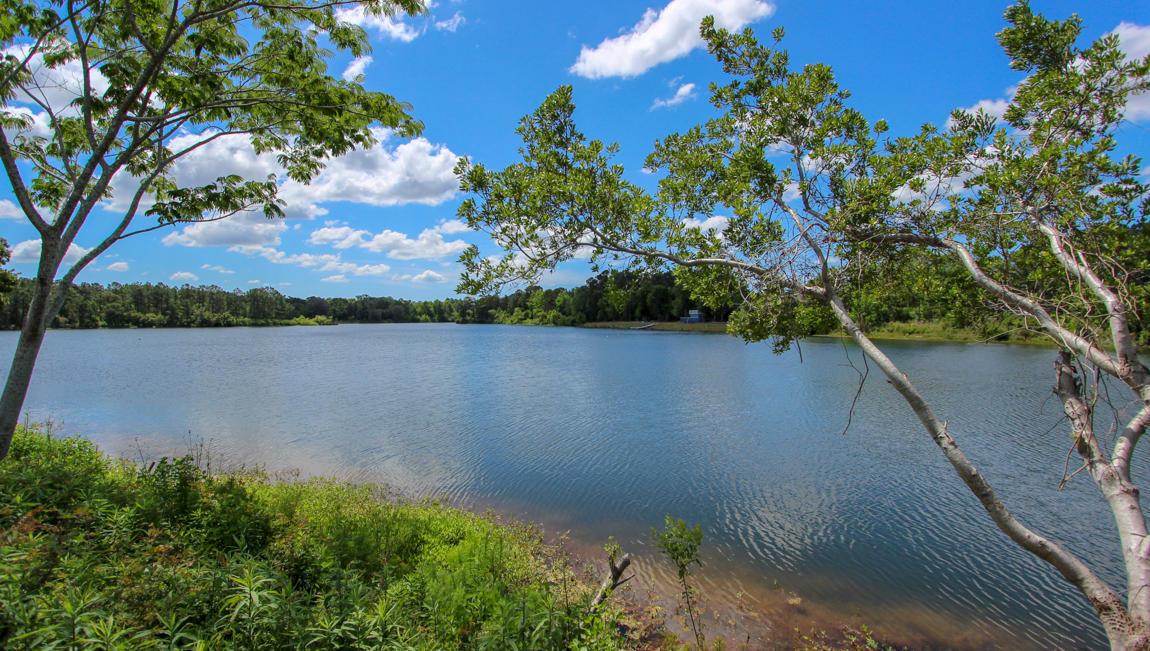 Woodbury Park Homes For Sale - 2740 Harmony Lake, Johns Island, SC - 3