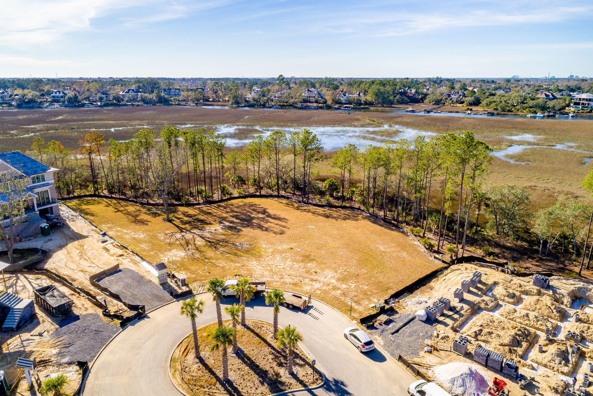 Daniel Island Park Homes For Sale - 113 Captains Island, Charleston, SC - 10